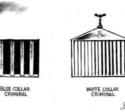 Gulere albe corupte si sistem in general