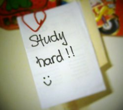 Alege munca sau studii !