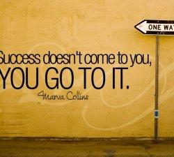Visezi la succes ?
