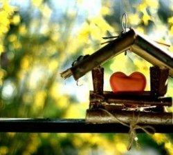 Avantajele locuintelor noi sustin dezvoltarea imobiliara